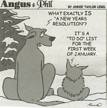 4_Resolutions